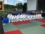 Pokaz Judo - Sułkowice